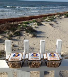 Jilz Gluten Free Crackerz at the beach